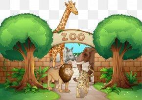 Cartoon Zoo Material - Lion Giraffe Leopard Illustration PNG