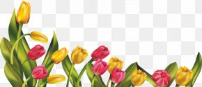 May Border Cliparts - Spring Flower Free Content Clip Art PNG