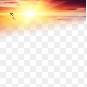 Lofty Sunset Under The Solitary Goose - Download Wallpaper PNG