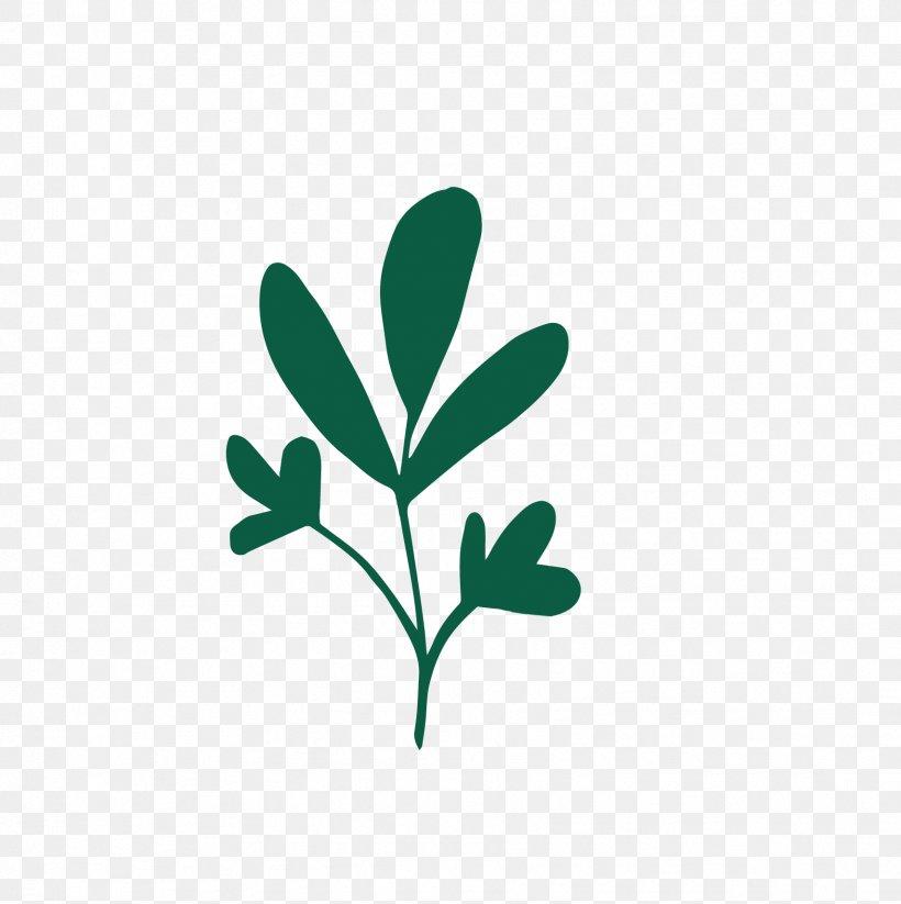 Logo Green Leaf Plant Stem Font, PNG, 1709x1716px, Logo, Branch, Green, Leaf, Plant Download Free