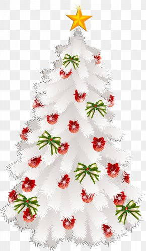 Fir-tree - Christmas Card Greeting & Note Cards Wish PNG