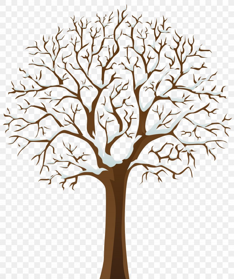 Tree Winter Clip Art, PNG, 6700x8000px, Tree, Arecaceae, Branch, Flower, Leaf Download Free