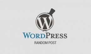 WordPress - Web Development WordPress Blog Search Engine Optimization PNG
