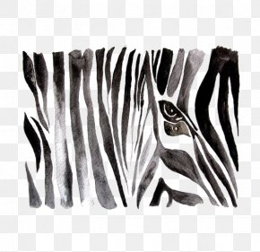 Drawing Zebra - Zebra Black And White Watercolor Painting Drawing PNG