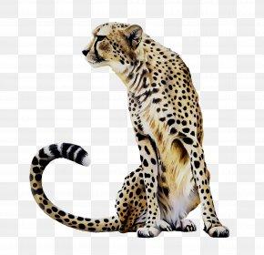 Cheetah Leopard Jaguar Ocelot Tile PNG