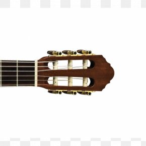 Cool Guitar - Acoustic Guitar Acoustic-electric Guitar Cavaquinho Tiple PNG