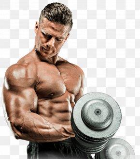 Bodybuilding Supplement Images Bodybuilding Supplement Transparent Png Free Download