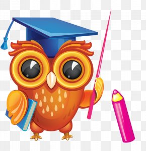 Cute Owl - Diploma Graduation Ceremony Clip Art PNG