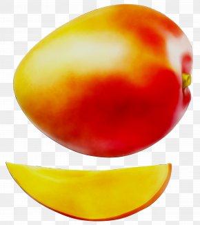 Vegetable Fruit Orange S.A. PNG