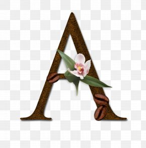 Eduardo Trueba - Letter English Alphabet Typeface PNG