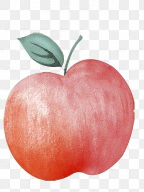 Hand-drawn Illustration Of Red Apple - Apple Illustrator Illustration PNG