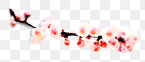 Plum Flower - Gratis Download Computer File PNG