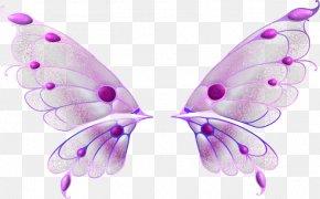 Asas - JPEG PhotoScape Image Raster Graphics Editor PNG