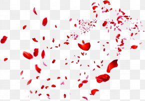 Scattered Red Rose Petals - Beach Rose Petal Red Heart PNG