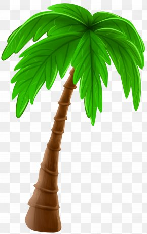 Palm Tree Cartoon Clip Art Image - Arecaceae Cartoon Tree Clip Art PNG
