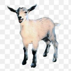 Mountain Goat Livestock - Goat Cartoon PNG