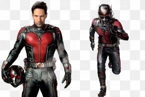 Ant-Man Clipart - Ant-Man Hank Pym Hope Pym Cassandra Lang Film PNG