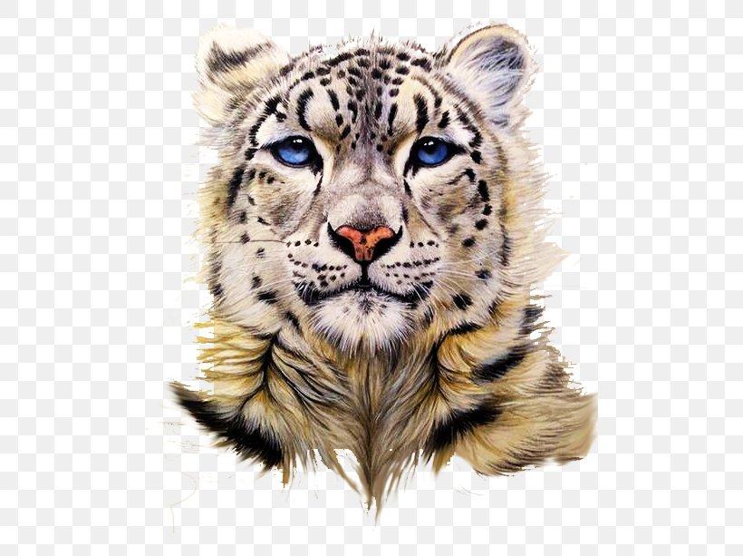 Snow Leopard Tiger Clouded Leopard Painting, PNG, 500x613px, Snow Leopard, Art, Big Cat, Big Cats, Carnivoran Download Free
