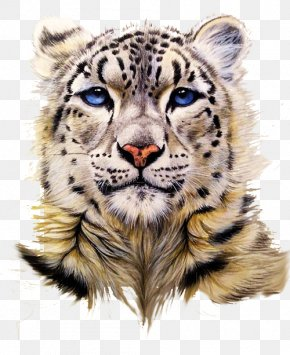 Snow Leopard Head Portrait Drawing - Snow Leopard Tiger Clouded Leopard Painting PNG