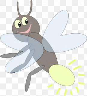 Cartoon Firefly - Insect Drawing Firefly Clip Art PNG