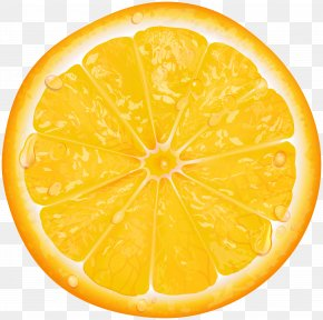 Orange Slice Transparent Clip Art - Lemon Orange Slice Clip Art PNG