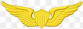 Cnc Army Aviation Wings - United States Astronaut Badge United States Aviator Badge Clip Art United States Of America PNG