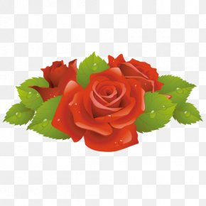 Red Rose Decorative - Rose Flower Clip Art PNG
