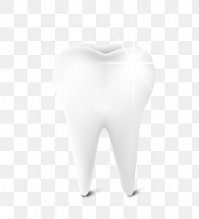 A White Teeth - Tooth Euclidean Vector Download Icon PNG