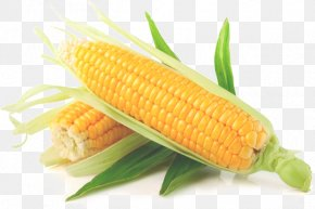 Yellow Corn - Maize Sweet Corn Corn On The Cob Vegetable Starch PNG
