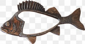 Fish Label - Fishing Picture Frames Clip Art PNG