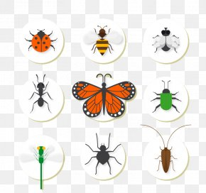 Cartoon Insects - Insect Bee Euclidean Vector Icon PNG