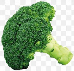 Broccoli Picture - Broccoli Cruciferous Vegetables Cauliflower Cabbage PNG