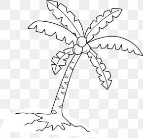 Coconut Leaves Material - Coloring Book Coconut Arecaceae Tree Drawing PNG