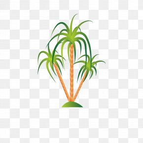 Tropical Plants - Illustration PNG