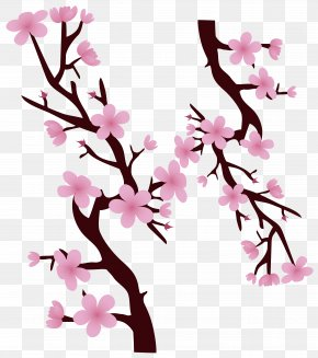 Decorative Pink Hand Painted Cherry Tree Branches - National Cherry Blossom Festival PNG