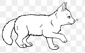 Cat - Whiskers Gray Wolf Cat Fox Cartoon PNG