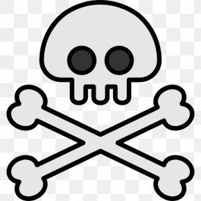 Skull - Jolly Roger Piracy Vector Graphics Clip Art Illustration PNG