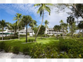 Beach - Captiva Island Sanibel Cottages Resort South Seas Island Resort Beach PNG