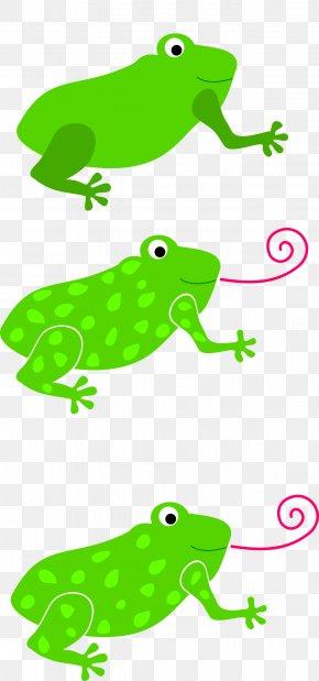 Frog - Tree Frog Tongue Toad Clip Art PNG