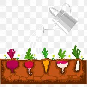Vegetables - Plant Garden Devils Ivy Shrub PNG