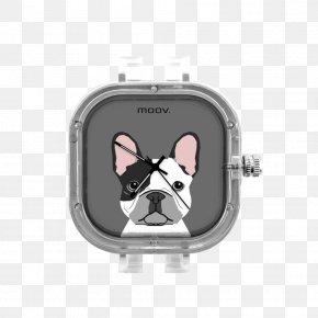 Puppy - Boston Terrier French Bulldog Dalmatian Dog Puppy PNG