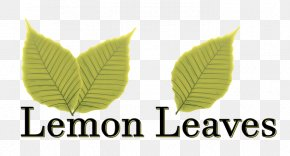 Delicious Takeout - Leaf Logo Lemon Brand Font PNG