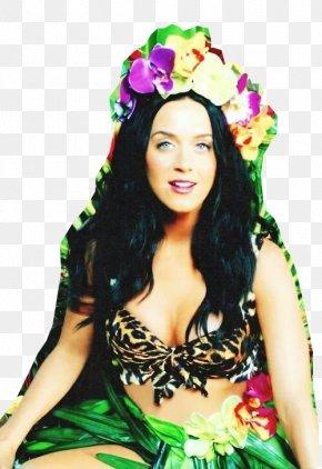 Roar - Katy Perry Roar One Of The Boys Teenage Dream PNG