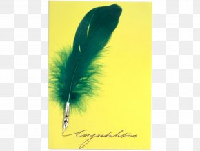 Feather - Paper Feather Pen Stationery PNG