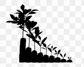 M Clip Art Flower Plant Stem - Twig Black & White PNG