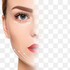 Face - Dr Kartik's Slimming Clinic(Vastrapur) Face Skin Eye Human Body PNG