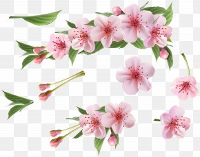 Spring Branch Pink Elements Clipart - Branch Clip Art PNG