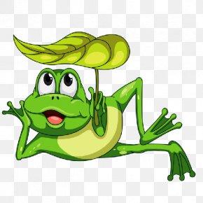 Cartoon Frog - Frog Cartoon Clip Art PNG