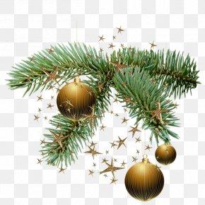 Christmas - New Year Snegurochka Christmas Tree Ded Moroz PNG