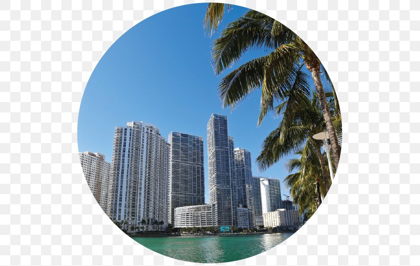 Miami International Airport South Beach Greater Downtown Miami Skyscanner Car Rental PNG x px Miami International Airport